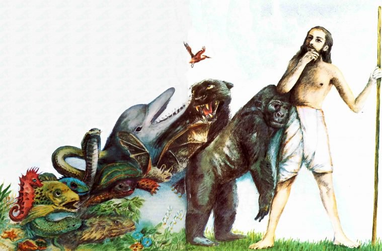 NEW GENETIC STUDY SERIOUSLY CHALLENGES DARWIN'S 'THEORY OF EVOLUTION'