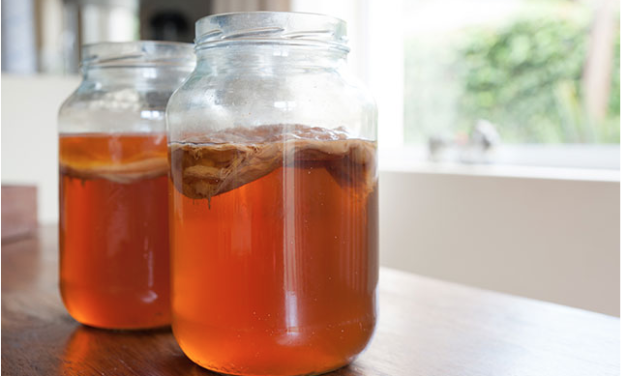 "Hailed by traditional Chinese healers as an ""immortal health elixir,"" kombucha is one of the best beverages for health"