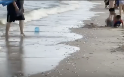 Residents see this and freak-out AGAIN just 5 days after the strange clear blue waters [VIDEO]