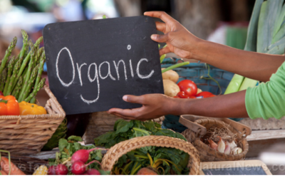 Congress is proposing big changes to the National Organic Standards Board – and farmers are raising the alarm