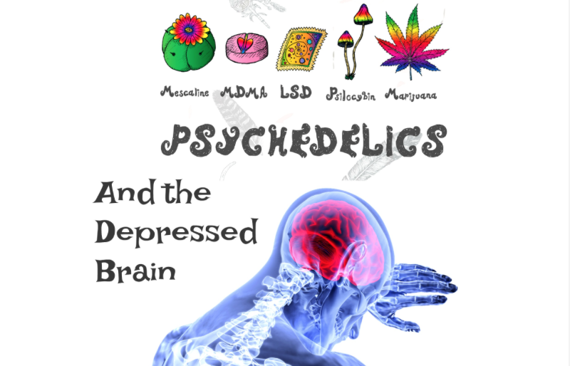 Psychedelics Shown To Heal Brain Cells Damaged From Depression