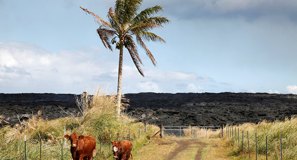 American Land in Pacific Grows Bigger