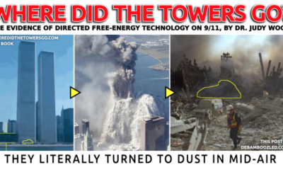 Judy Wood by Robert Steele: Memorandum for the President: 9/11 Twin Towers Were Vaporized by Directed Energy Weapons