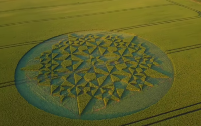 Martinsell Hill CROP CIRCLE 7.7.2018  [VIDEO]