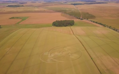 Coneybury CROP CIRCLE [VIDEO]