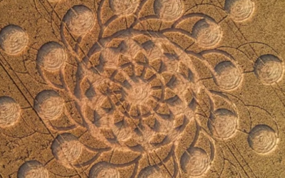 This Mind Blowing Crop Circle Just Appeared in the UK [VIDEO]
