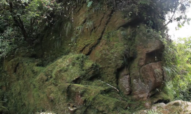 The Amarakarei Face—A Supermassive Ancient Face Hidden Deep Within the Peruvian Amazon