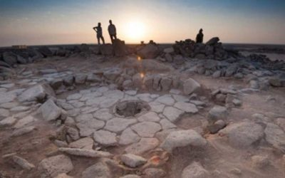 14,400-year-old Bread Causes Major Re-think on the Birth of Agriculture