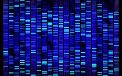 The Digest: The UK Is Creating a Database of Citizens' DNA and Other Biometrics