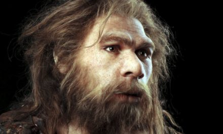 Neanderthal Brains To Be Implanted in Robots to Create Cyborg Cavemen
