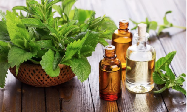 The Health Benefits of Patchouli Oil