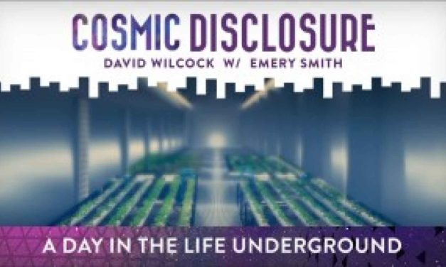 COSMIC DISCLOSURE: A DAY IN THE LIFE UNDERGROUND
