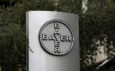 Bayer's stock plunges after Monsanto's Roundup cancer trial