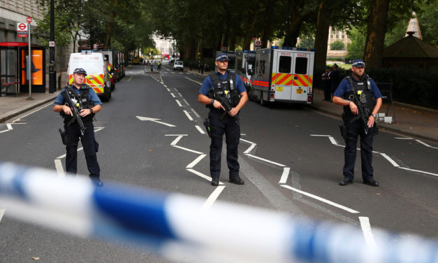 Crash at London's Parliament treated as terrorist incident – Met police