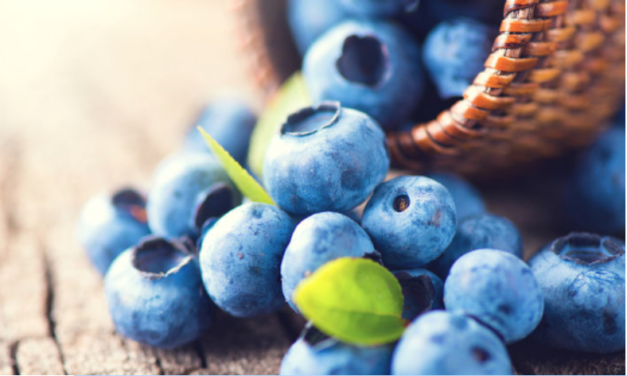 Positive Effects of Blueberries on Mood in Children and Young Adults