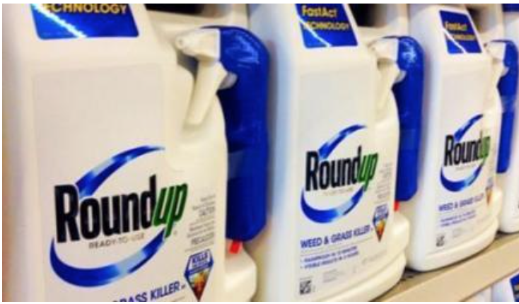 Monsanto Slammed With $289 Million Verdict In Historic 'RoundUp' Cancer Lawsuit