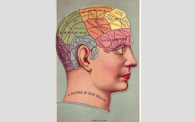 Neuroplasticity: The good & the bad – what happens to someone's brain from complaining every day?