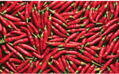 Stop Prostate (And Other) Cancer Cold with Hot Chili Peppers