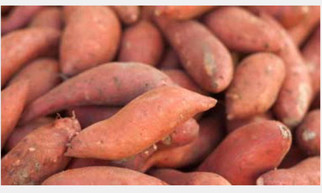 What Are the Health Benefits of Yams?