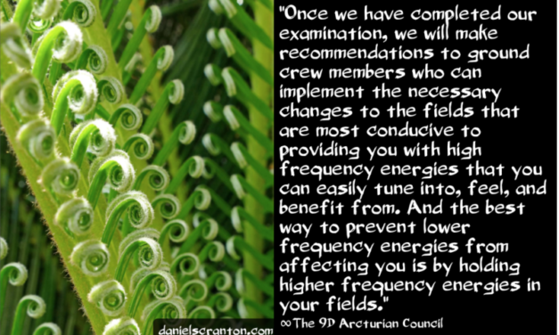 Your Energy Fields ∞The 9th Dimensional Arcturian Council