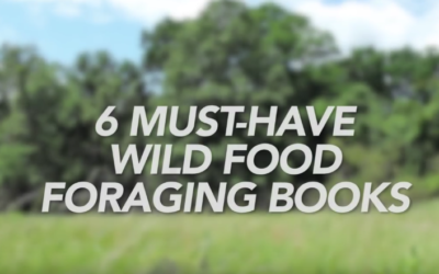 6 Must-Have Wild Food Foraging Books [VIDEO]