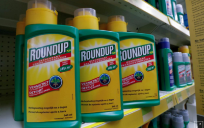 Bayer's Monsanto asks U.S. court to toss $289 million glyphosate verdict