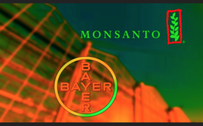 BAYER'S STOCK PLUMMETS 32% IN 3 MONTHS AFTER IT'S ROUNDUP OF MONSANTO