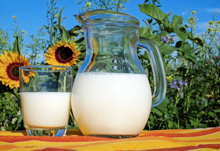 Which Milk Alternatives Are Worthy Of Your Consideration?