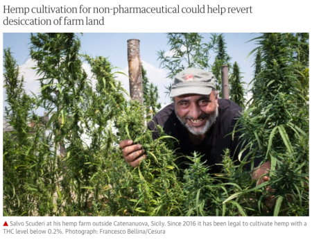 Italy Learns Hemp Can Save the Planet from the Scourge of Monsanto