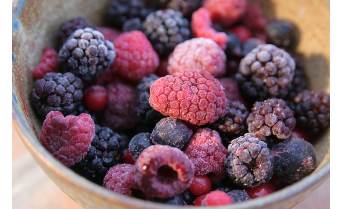 20 Perishable Foods You Can Freeze For Later