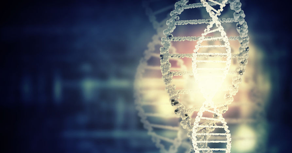 Epigenetic Memories are Passed Down 14 Successive Generations, Game-Changing Research Reveals