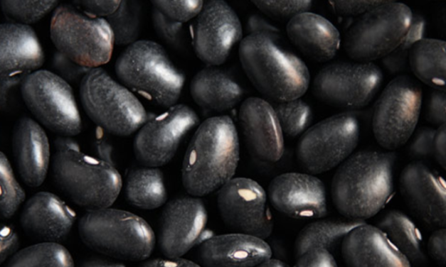 Why black beans are the best foods for hypertensive people