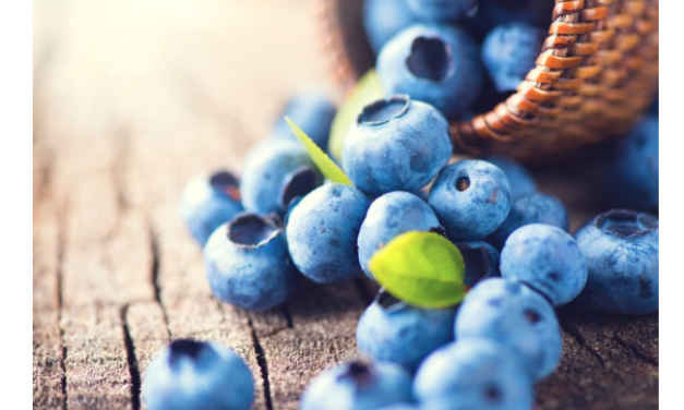 Just 300 Grams of Blueberries Protects Against DNA Damage in Humans