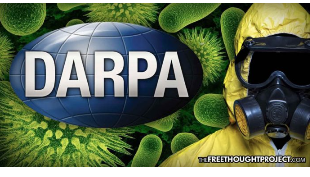Scientists Accuse DARPA Of Genetically Modifying Insects For Bioweapon To Spread Agricultural Viruses