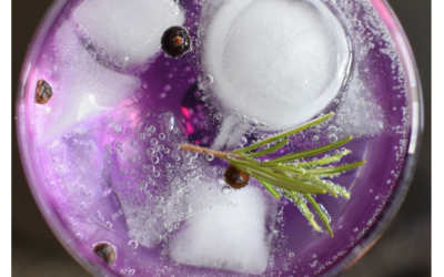 Drinking This Herb Infused Water Increased Memory By 15 Percent