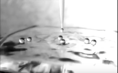 The Fourth Phase of Water: Dr. Gerald Pollack [VIDEO]