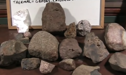 Mudfossils Part 1 & Part 2, Plus How to Find Your Own [VIDEOS]