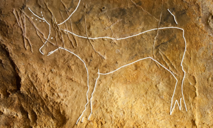 Ice Age Cave Art Found Under Layers of Centuries-Old Graffiti