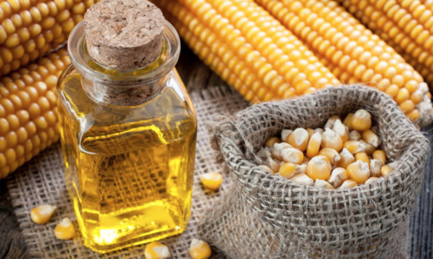 Peer-reviewed study looks at the differences between GMO corn and its natural, non-GMO counterpart: Hundreds of Differences Found