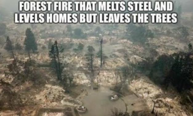Analyses of the CA Fires: DEW and Smart Meter Attacks [Article and 3VIDEOs]