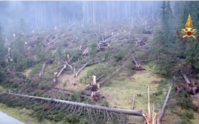 """Tunguska-like Storm Damage in Northern Italy-""""Going to take a century to recover"""" [VIDEO]"""