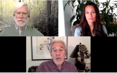 Bruce Lipton and Tom Campbell: Physics, Biology, and Love [VIDEO}