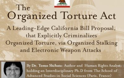 Bill Proposal in California Targets Those Who Torture 'Targeted Individuals'