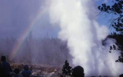 Yellowstone's Steamboat Geyser Erupts 30 Times In 2018, Breaking Record From 1964 [VIDEO]
