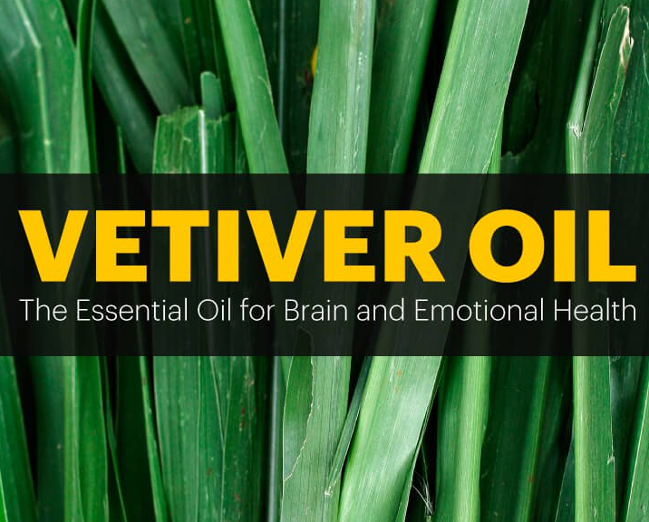 Vetiver Oil Improves ADHD, Anxiety & Brain Health (And Repels Termites, Too!)