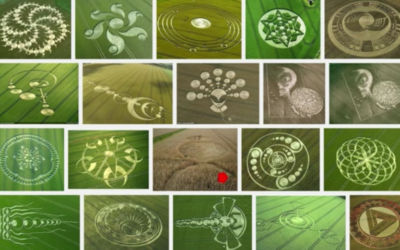 Crop Circles a hidden message? [VIDEO]