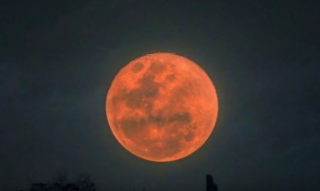 Super Blood Wolf Moon Eclipse Will Light Up The Night Sky In A Few Weeks [VIDEO]