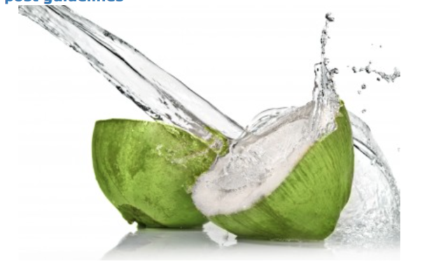 Coconut Water: Far More Than Just a Refreshing Beverage