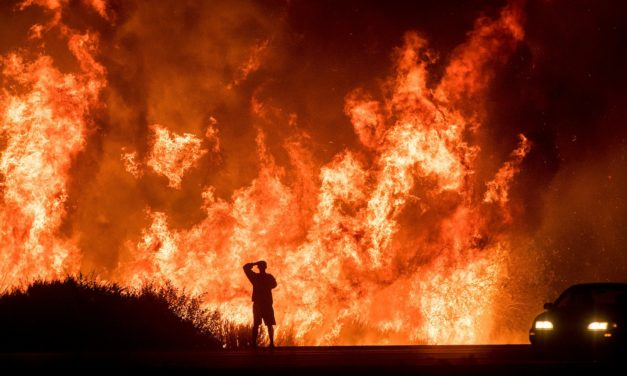 California Fires Under the Microscope [VIDEOS]