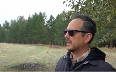 Remote Viewing the Ancient Aliens of ECETI Ranch and Mt. Adams [VIDEO]